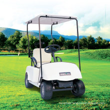 China Manufacturers 1 Seater Golf Cart Dg-C1 with Ce Certificate (China)