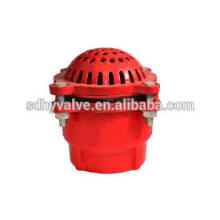 DN50-DN300 PN16/CLASS 125 Cast Iron price foot valve