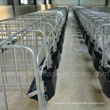 Cajón de gestación de cerdos para equipos de granja de cerdos