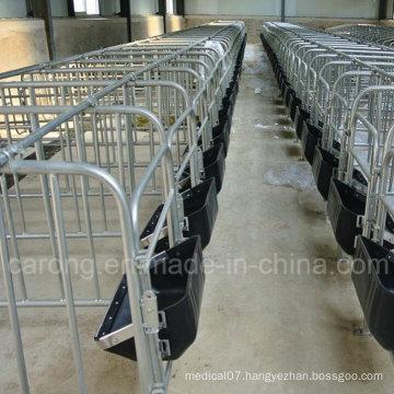 Pig Gestation Crate for Pig Farm Equipment
