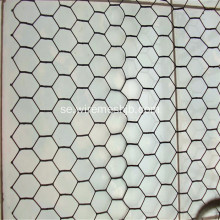 PVC Coted Hexagonal Wire Netting För Kyckling House