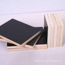 Fabrication de contreplaqué de construction de contreplaqué de construction de Black \ Brown