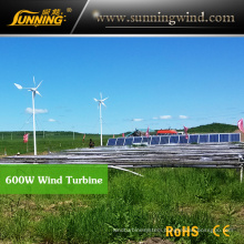 Residential Wind Generator 600W Maglev Wind Turbine Home Use