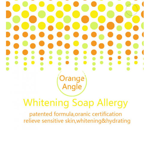 Orange enzyme Hand Soap