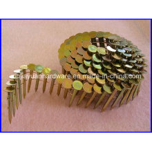 Hot Sale Yellow Galvanized Coated Coil Roofing Nail
