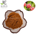 salidroside 3% no plasticizer rhodiola rosea root extract