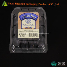 Clamshell plastic blueberry boxes