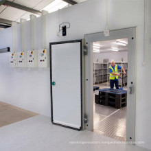High Quality Walk in Forzen Cold Room For Ice