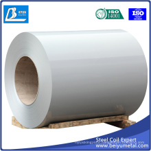 High Quality Prepainted Steel Sheet for Buliding