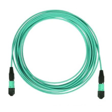 Competitive 24cores Multi Mode MTP/MPO Om3/Om4 Fiber Optic Patch Cord