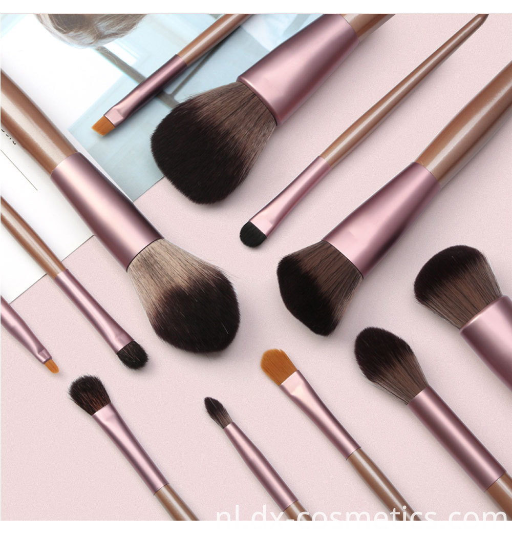 12 Pieces Grapelet Makeup Brush Set Hot9
