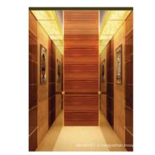 Fjzy-Elevator (FJ8000-1) Ascenseur Passager Fjzy-199