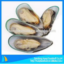new frozen high quality ample half shell mussel