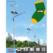 Solar LED Street Light with Wind Generator (BDTYN5)