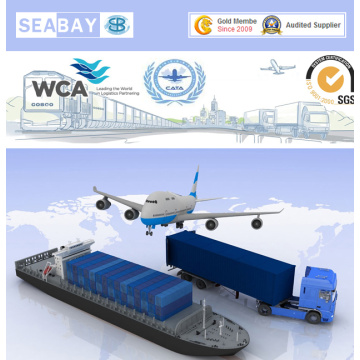 Door to Door Service to Malaysia Sea Freight/Ocean Freight/Air Freight/Shipping Service
