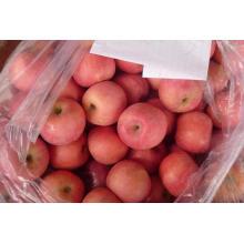 New Crop Fresh Apple Qixia Apple