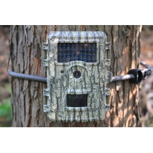 Trail Game Game Camera