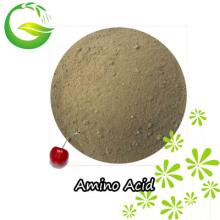 Aminoácidos quelados micronutrientes AA + Cu