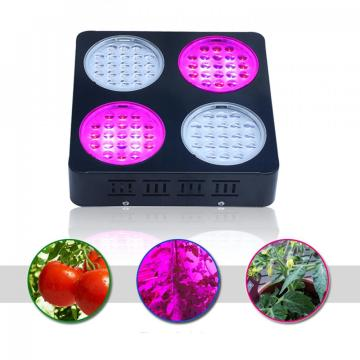 Super Power 252W LED wachsen Licht