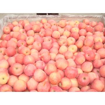 Высокое качество свежего яблока из Китая