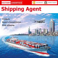 Agente de Logística/transporte de agente/transporte frete encaminhador na China