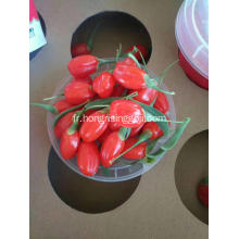 Big Fresh Goji Berry Baie de Goji sec