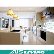 Europa-Art-nach Maß Möbel PVC-Küchenschränke (AIS-K701)