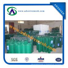 Гальванизированный, PVC сваренная Ячеистая сеть (Фабрика ISO9001)