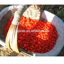 Горячая Распродажа Лайчи Мушмула сушеные органических goji Берри Импорт ягод Годжи