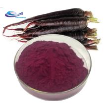 Precio al por mayor polvo de jugo de zanahoria púrpura