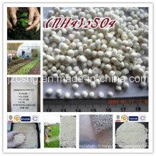 Produit principal Engrais azoté N21% Sulfate d'ammonium (NH4) 2so4