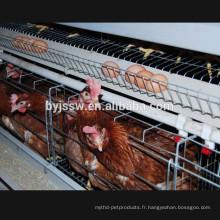 Une cage de poulet cage Cage couche de poulet pour le climat tropical