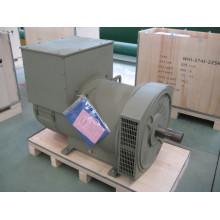 Трехфазный бесщеточный генератор 280 кВт (JDG314E)