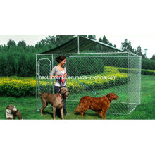 Chain Link Outdoor Dog Kennel with Roof for Wholesale