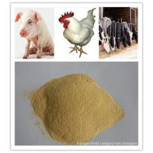 Feed Yeast Powder Rich in Various Nutrients