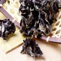 Getrockneter Agaric aus China