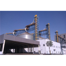 100t / d Oilseed Pretreatment Production Line