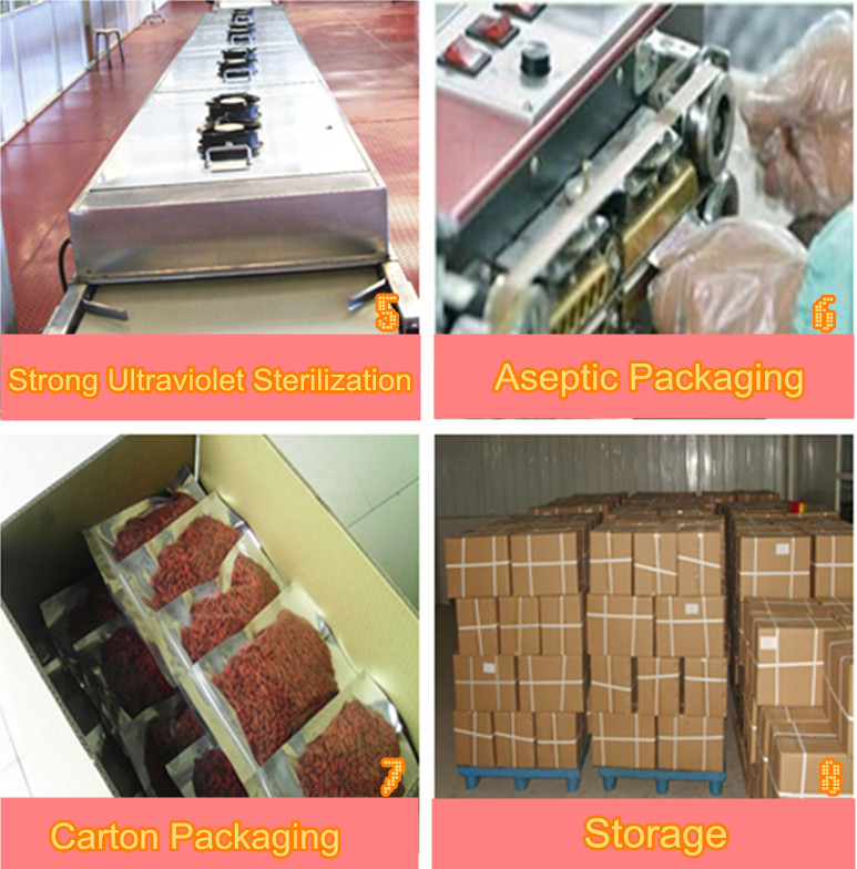 Goji berry sterilization, packing, storage