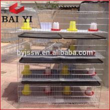 Cage de poulet vieille journée d'assurance-commerce avec buveur et mangeoire