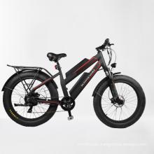 dynavolt 7 speed double battery fat tire electric mountainbike