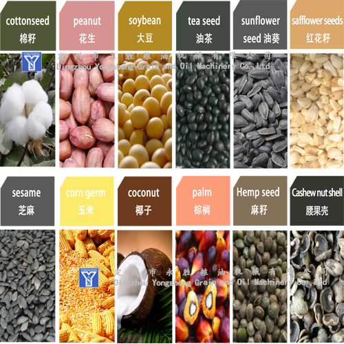 various oil bearing seeds