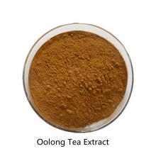 Compre en línea los ingredientes activos en polvo de extracto de té Oolong