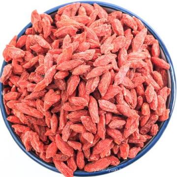 2018 Crop Dried Organic Goji Berries fruits