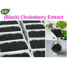Extracto de Chokeberry (Anthocyanin5% -70%) CAS: 18466-51-8