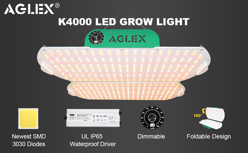 K4000 grow light