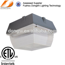 PC cover LED canopy ceiling light fixture