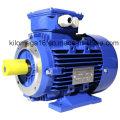 Три фазы электрического двигателя литого железа с сертификатом CE