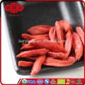EU standard dried goji berries in low pesticide