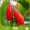 high quality ningxia organic goji berry/wolfberry jam/fruit jam/medlar jam