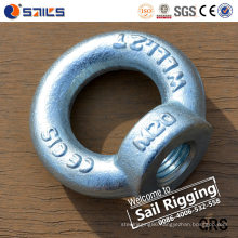 Carbon Steel Rigging Drop Forged Lifing DIN582 Eye Nut/ Zinc Plated Eye Nuts